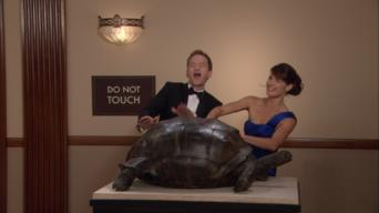 How I Met Your Mother: Season 6: Natural History